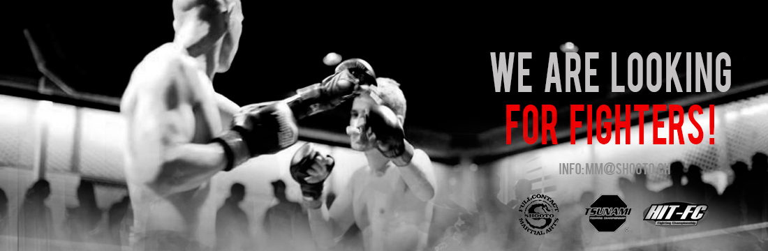 banner-site-shooto2
